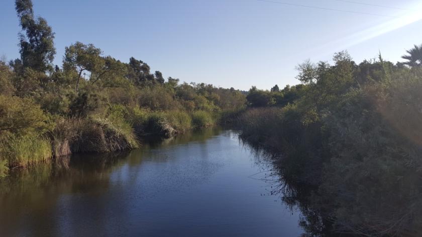 San Dieguito River at the future site of the bridge.