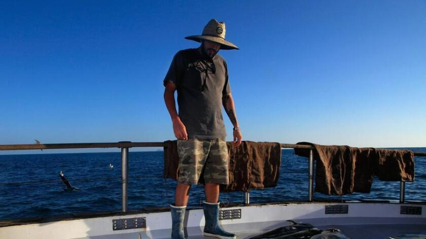 Bobby Edwards of Burbank admires the catch of Dorado while sport fishing aboard the Old Glory out of H&M Landing. (/ Misael Virgen)