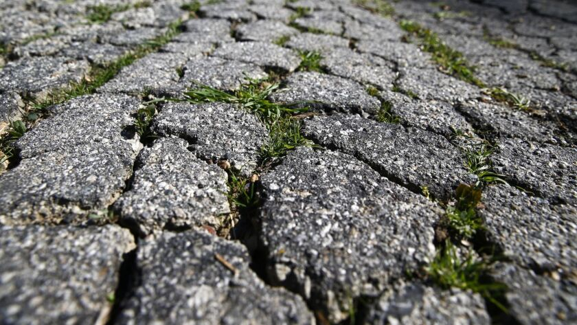 WOODLAND HILLS, CALIF. - MARCH 29: Grass grows thru the cracks on San Miguel Street, which was withd