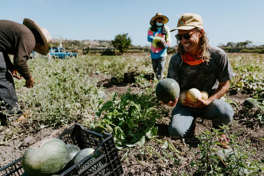 People in a field holding produce at the Ecology Center in San Juan Capistrano.