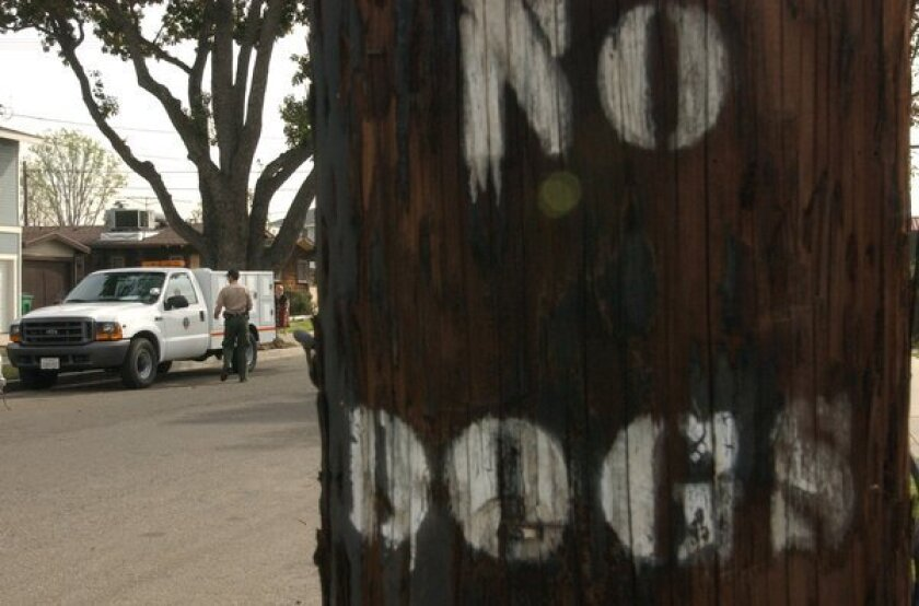 """""""No Dogs"""" was painted on a utility pole in the city of Orange in 2004 after a pit bull attacked a 91-year-old woman. The injuries forced doctors to amputate both of her arms from the elbow."""