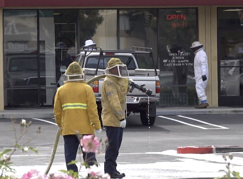 Firefighters wait as beekeepers search for a hive.