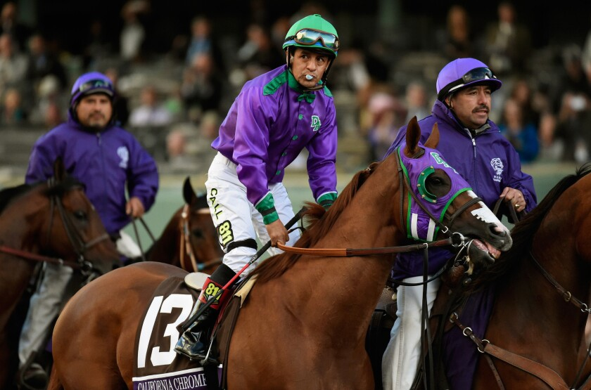 Jockey Victor Espinoza atop California Chrome takes the track for the start of the 2014 Breeders' Cup at Santa Anita Park on Nov. 1.