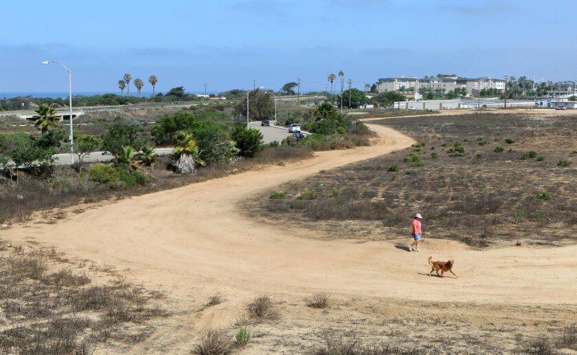 An open area near Ponto Beach where development is planned.