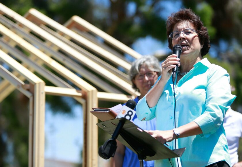 "Former Assemblywoman Lori Saldaña talked about how ""tiny houses"" could be a safer and more humane alternative to the conditions homeless people now face in San Diego."