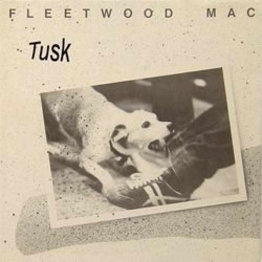 Fleetwood Mac's follow-up to 'Rumours' (also produced by Caillat) was the decadent double album, 'Tusk.'