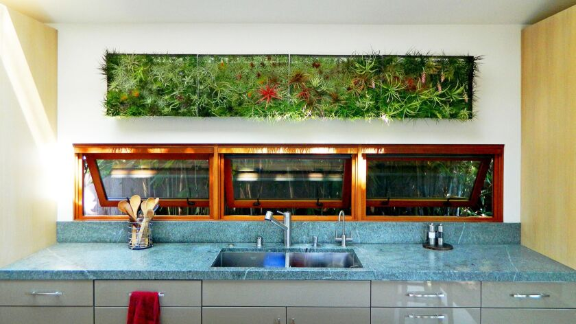 PROBLEM: An indoor living wall without the need for heavy soil and potentially leaky drip irrigation