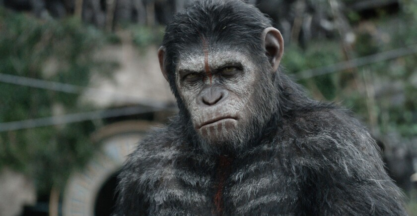 "Andy Serkis as Caesar in 2014's ""Dawn of the Planet of the Apes."""