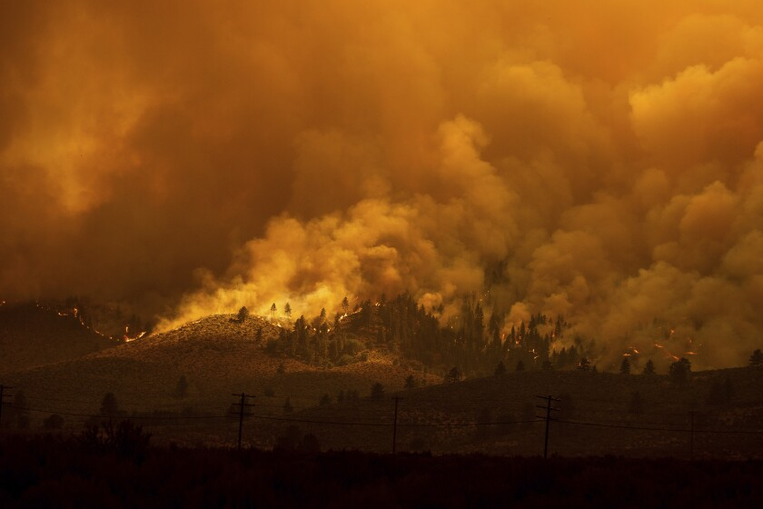 The Sugar Fire, part of the Beckwourth Complex Fire, burns in Doyle, Calif., on Saturday, July 10, 2021. (AP Photo/Noah Berger)