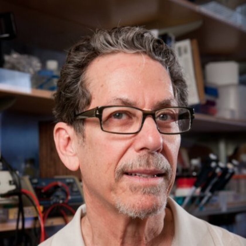 Ronald Evans, the March of Dimes Chair in Molecular and Developmental Biology at the Salk Institute.