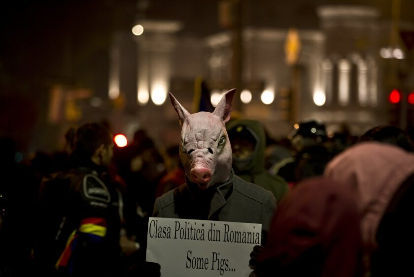 """A man wears a pig mask holding a banner that reads """"The Romanian political class - Some pigs"""" during the fifth day of protests in Bucharest, Romania, Saturday, Nov. 7, 2015, calling for better governance and an end to corruption, in Bucharest, Romania, Nine more people died Saturday, bringing the d"""