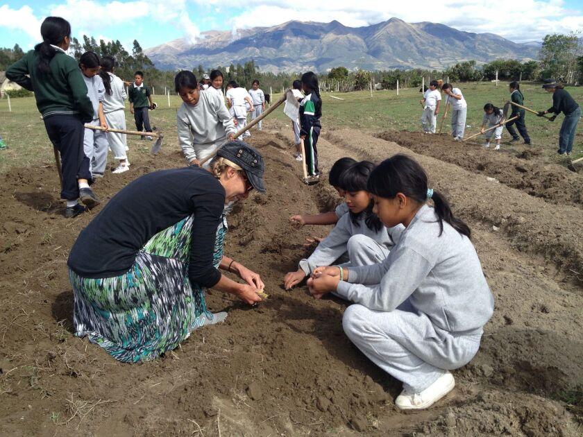 Tandana volunteers and Ecuadorian students plant vegetable seeds in a school garden.