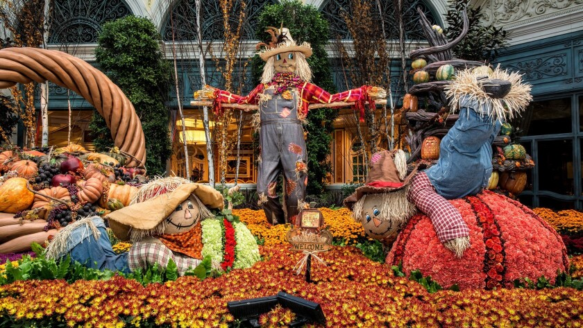 Thousands of carnations, roses and other flowers help create a cornucopia of color at Bellagio. Full of autumn icons, the display will be open through Nov. 25.