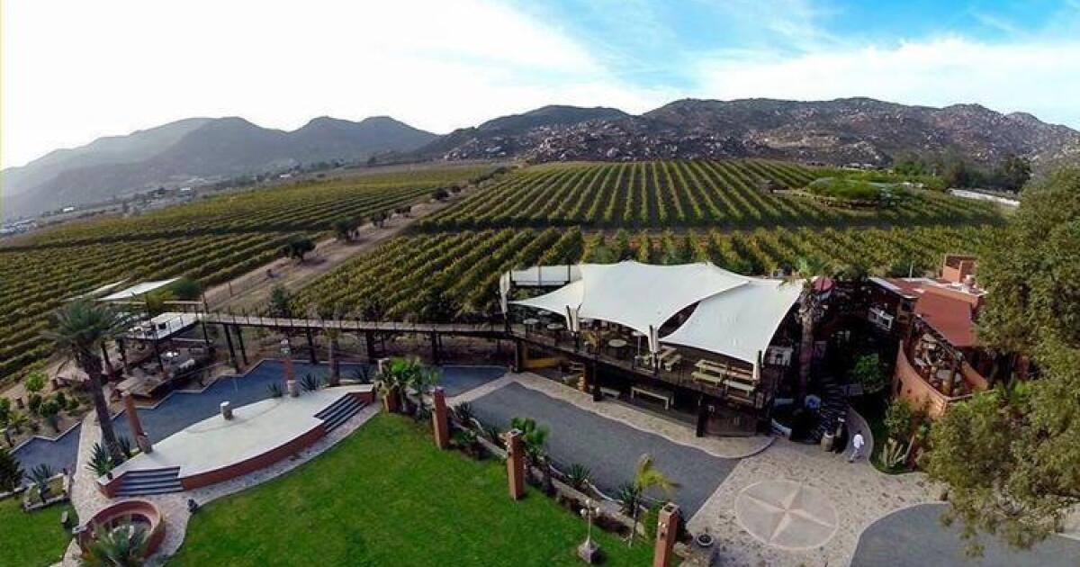 Boutique Hotel Valle de Guadalupe: A Perfect Getaway in Mexico