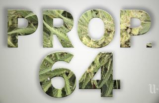Proposition 64, what happens next