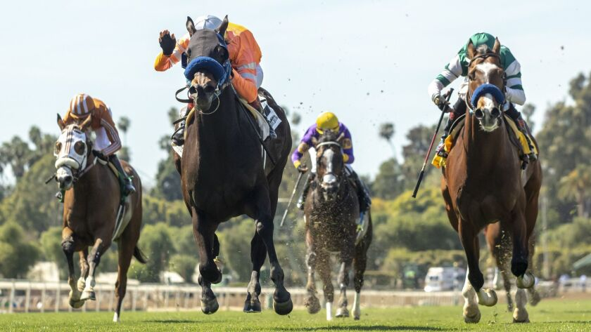 Law Abidin Citizen and jockey Tiago Pereira, second from left, outlegs Mesut (Geovanni Franco), left, Air Vice Marshal (Martin Garcia), third from left, and Cistron (Rafael Bejarano), right, to win the Grade III, $100,000 San Simeon Stakes on Sunday at Santa Anita Park.