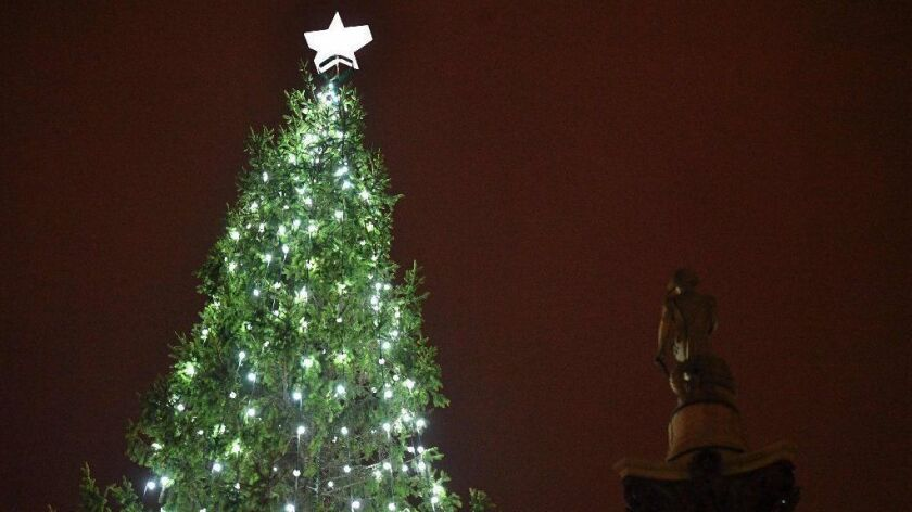 The lights on the Christmas tree in Trafalgar Square in London twinkle on Thursday.