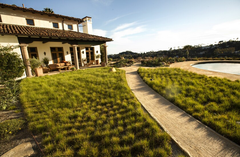 Look At This Stunning Rain Garden Landscape In Brentwood Los