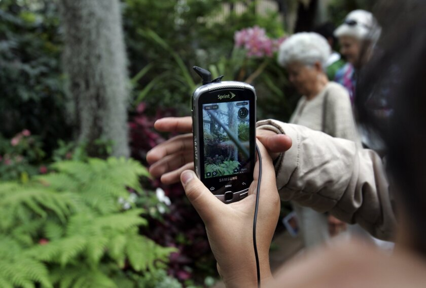 "Students use new Sprint Samsung ""Moment"" smart phones specially programmed by Qualcomm to help them learn as they tour the Botanical Building at Balboa Park."