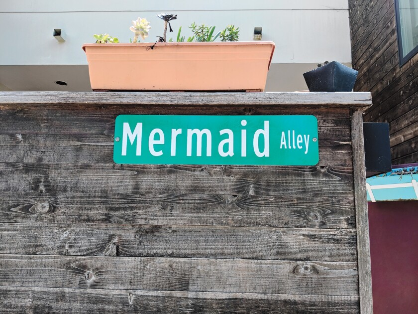 Mermaid Alley: Once every blue moon, beautiful mermaids come to the shore of Marine Street Beach. They want to blend in with locals for little drink and fun. In this alley, they swap their shiny tails for heels.