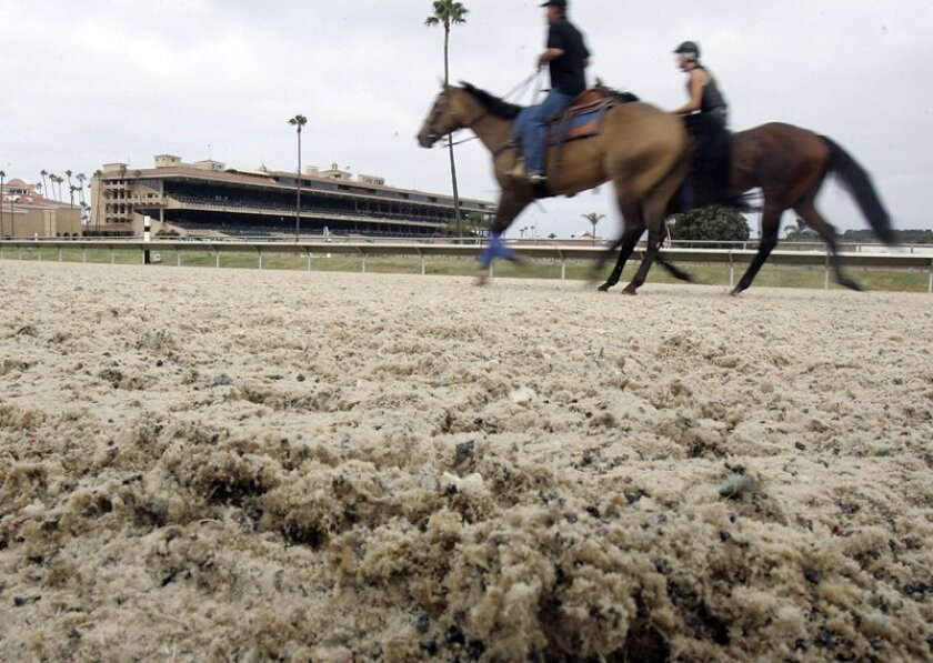 From 2007-14, Del Mar raced on a synthetic surface called Polytrack. Some people in the horse racing industry are wondering if it's a good idea to return to that type of surface.