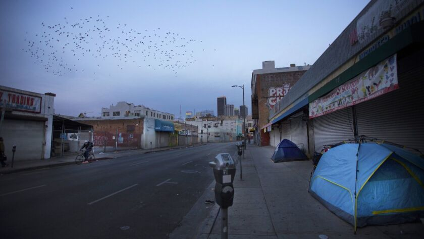 LOS ANGELES, CA NOVEMBER 15, 2017: At dawn a flock of birds flies over tents on the side walk on Eas
