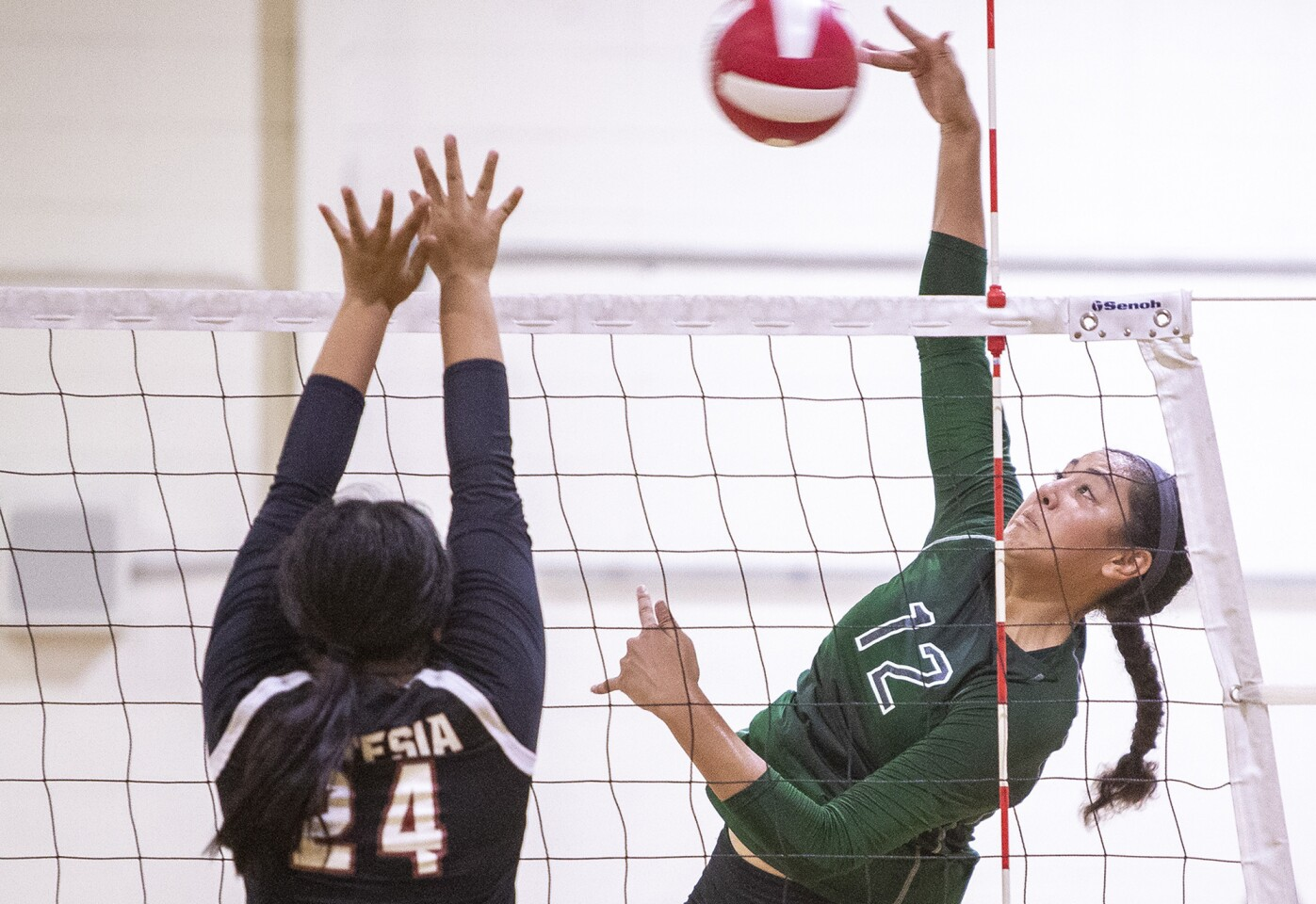 Photo Gallery: Costa Mesa vs. Artesia in a girls' volleyball match