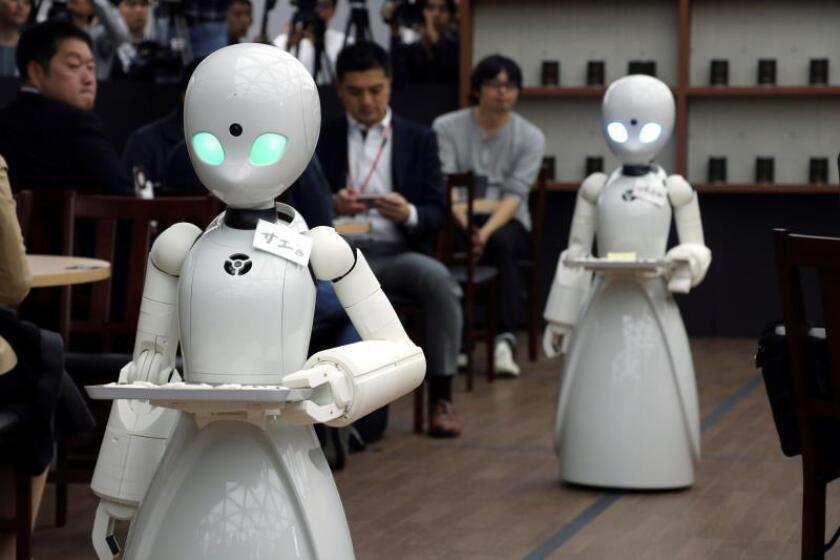 Un café de Tokio ha lanzado un proyecto pionero para utilizar robots como camareros, manejados a distancia por una persona discapacitada. En la imagen se ven las máquinas atendiendo a los clientes. Se llama OriHime-D, pesa 20 kilos y desde hoy atiende como camarero en un café de Tokio. Se trata de un robot blanco de 1,20 metros de alto que funciona gracias a los movimientos que le ordena a distancia una persona discapacitada. En el café del barrio tokiota de Akasaka funcionan desde hoy tres robots con ese nombre. EFE