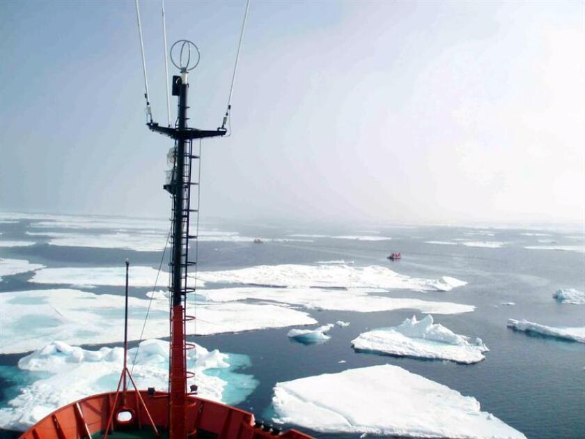 Advierten que el deshielo altera la composición del agua del Ártico central