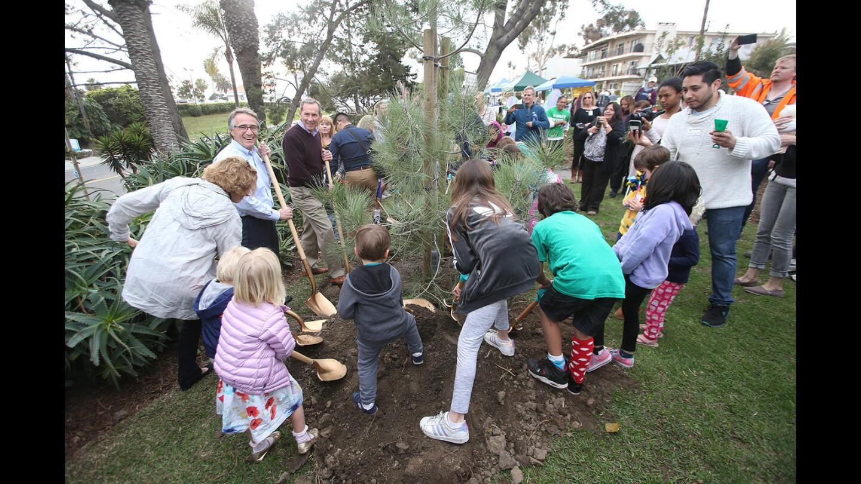Laguna celebrates Arbor Day with tree planting