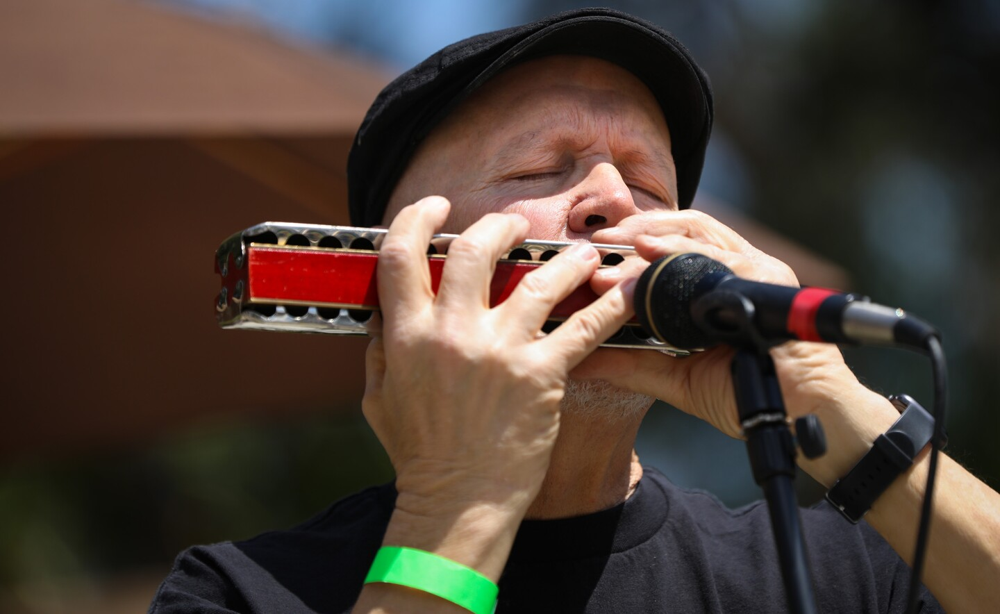 Dane Terry of the group, Plow, performs during the 20th annual Spring Harp Fest in Harry Griffen Park.