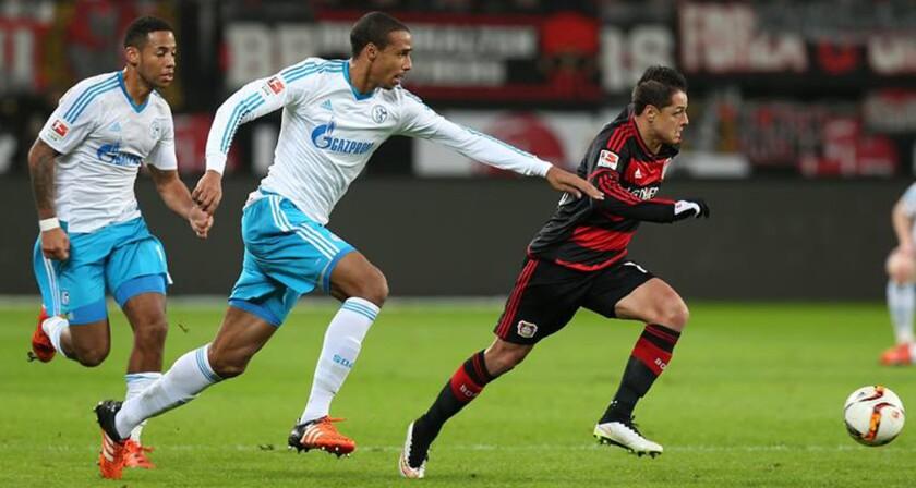'Chicharito' Hernández (d) en una ofensiva del Bayer Leverkusen.