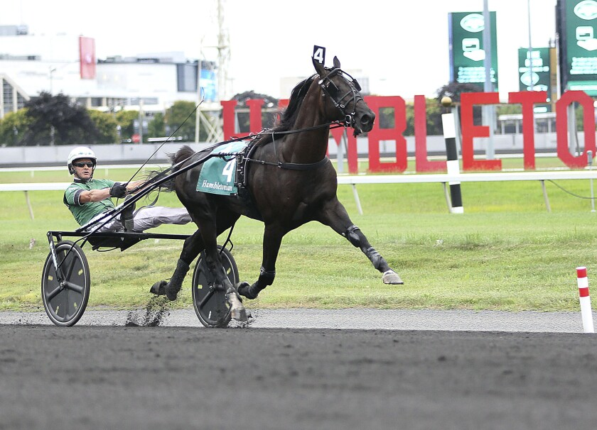 In this photo provided by Michael A. Lisa/Meadowlands Racing & Entertainment, Captain Corey (4) runs to give trainer-driver Ake Svanstedt his second win in the $1 million Hambletonian at the Meadowlands in East Rutherford, N.J., Saturday, Aug. 7, 2021. (Michael A. Lisa/Meadowlands Racing & Entertainment via AP)