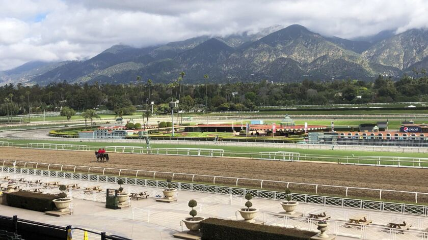 A few horses and riders are seen on the track while members of the California Horse Racing Board wei