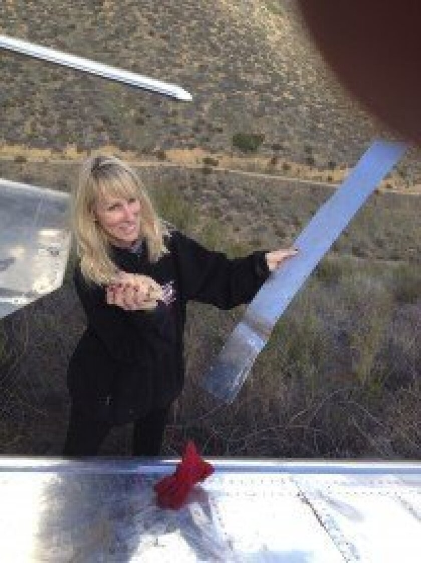 Pilot Jeremiah Jackson's wife Nina helps to salvage the plane following the crash.