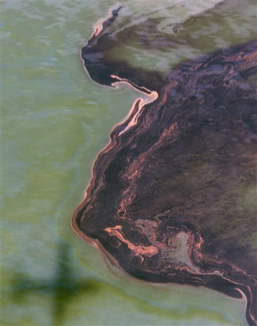 Oil collects on the water's surface near the site of the Deepwater Horizon oil spill in the Gulf of Mexico Sunday, June 13, 2010. Oil continues to flow from the wellhead some 5,000 feet below the surface.  (AP Photo/Dave Martin)