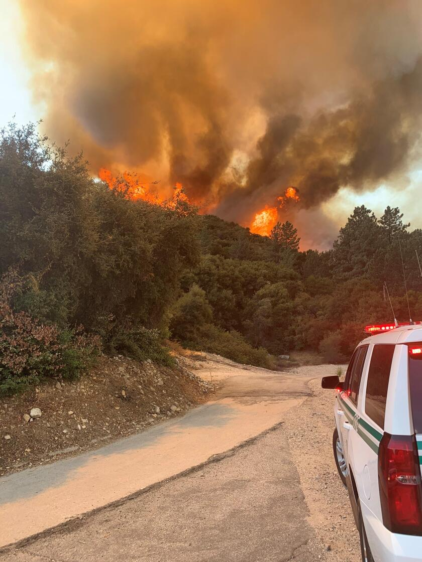 The Bobcat fire in Angeles National Forest.