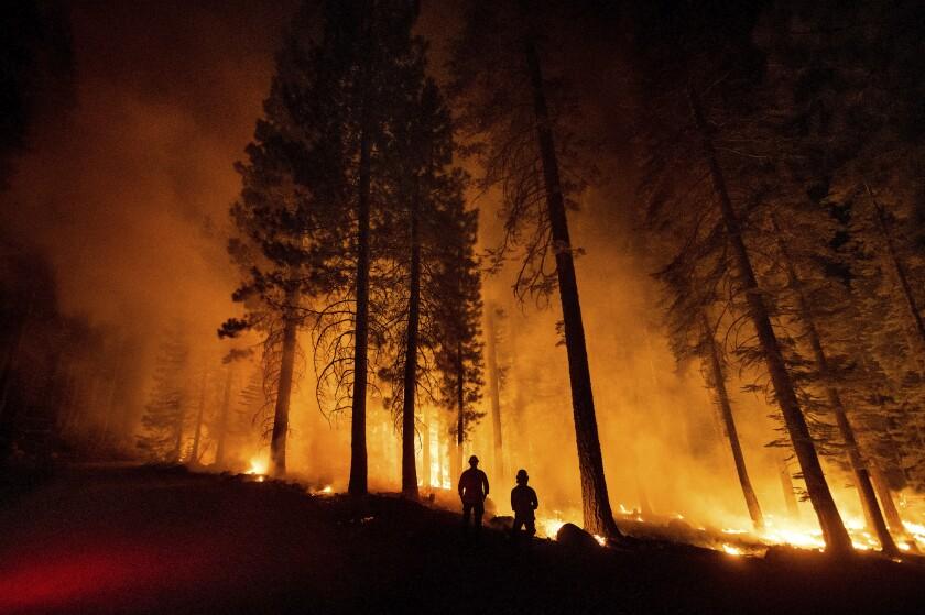 Unos miembros del Departamento Forestal y de Protección contra Incendios de California supervisan un operativo contra incendios, mientras las llamas arrasan con el bosque nacional de Lassen, el lunes 26 de julio de 2021. (AP Foto/Noah Berger)