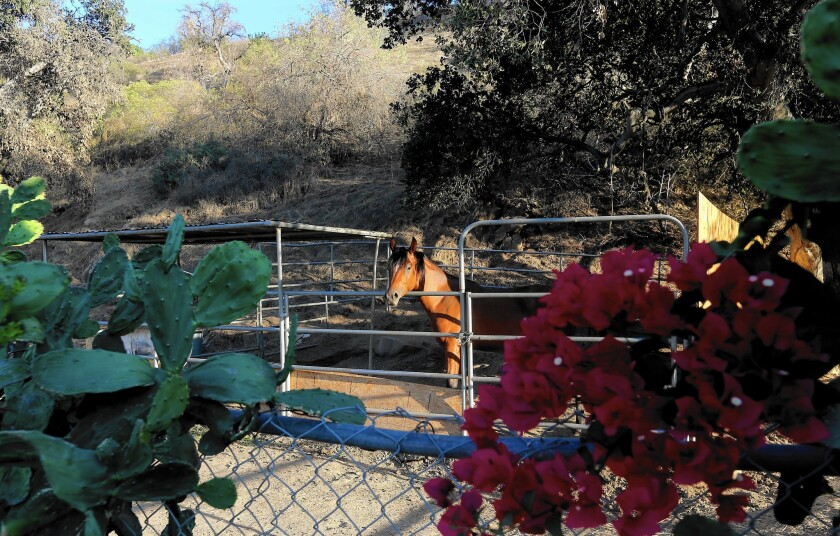 So far, land acquisition has been the biggest cause of delays. The authority owns only a small fraction of the parcels it needs for the 300-mile segment from Burbank to Merced. Above, a property on Wentworth Street in Tujunga, where a tunnel may be dug in the San Gabriels.