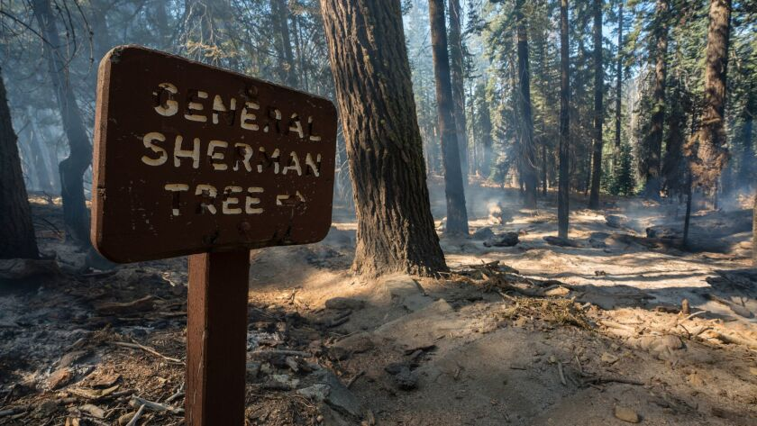 SEQUOIA NATIONAL PARK, CA OCTBER 20, 2018 -- An old sign points the way to the nearby General Sherma