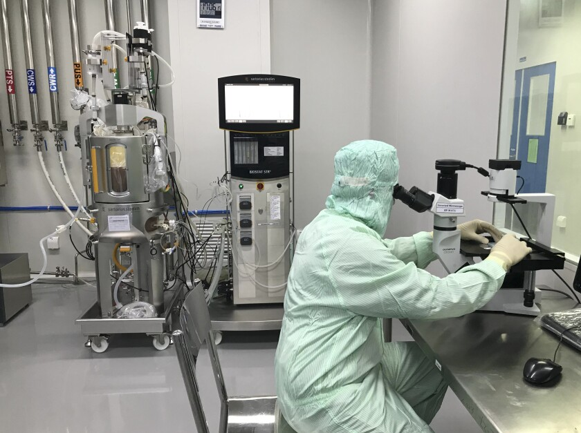 A member of production checks cell growth and viability of a bioreactor sample under an inverted microscope inside the Incepta plant on the outskirts of Dhaka in Bangladesh Saturday Feb. 13, 2021. (AP Photo/Al-emrun Garjon)