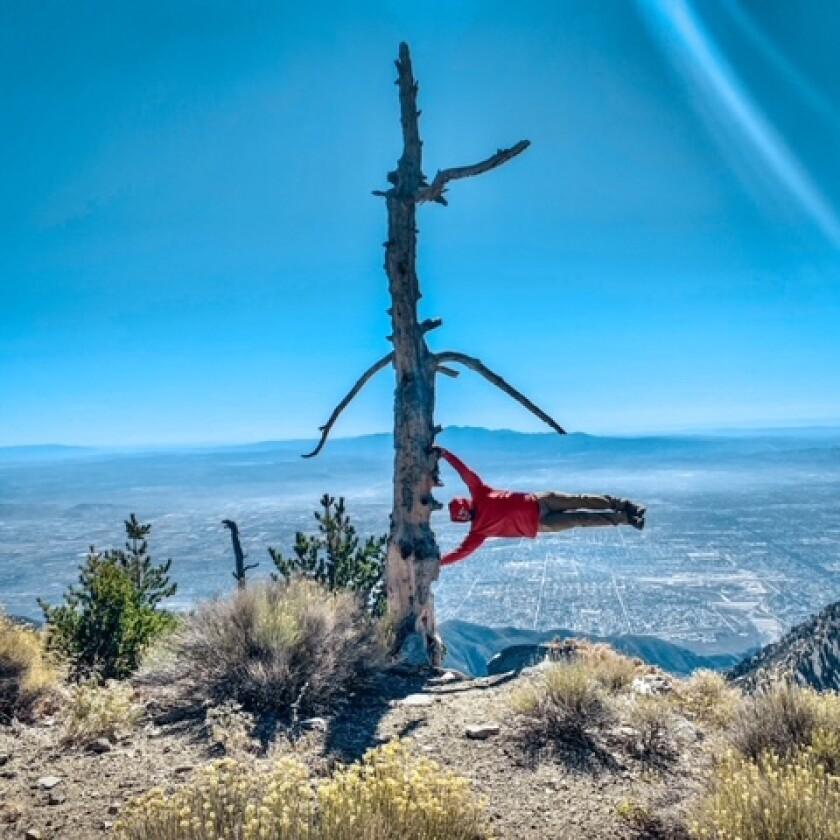 Man horizontally hanging onto a tree