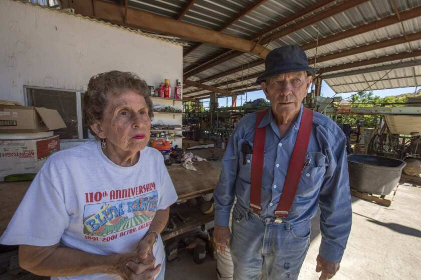 Elizabeth and Ray Billet, the owners of Blum Ranch in Acton.