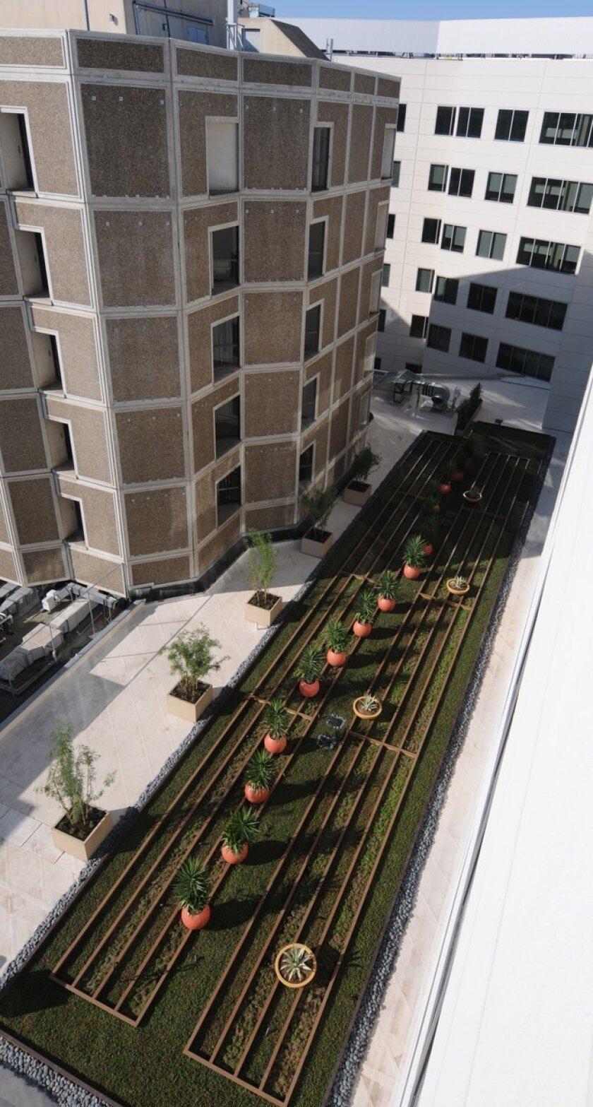 Sharp Memorial's new rooftop garden