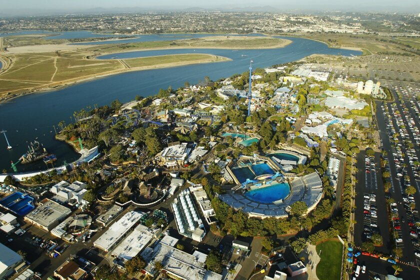SeaWorld, as expected, saw its attendance and earnings slump during the first quarter of this year.