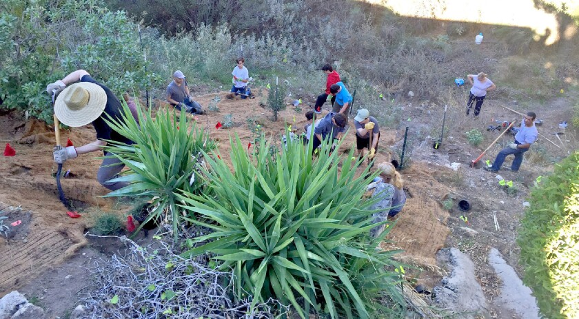 Rosemont Preserve in La Crescenta partnered with neighbors, volunteers and landscapers from FormLA in November to restore habitat in a neighbor's yard.