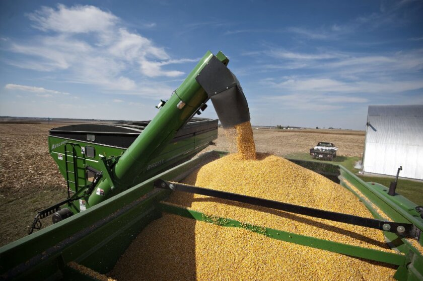 Corn prices plunged last week on planting data that was higher than expectations.
