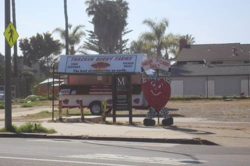 The Thacker Berry Farms stand on la Jolla Boulevard sells fresh berries that are delivered daily.