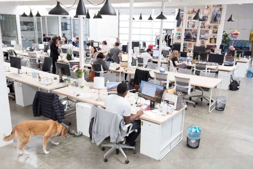 Omaze office