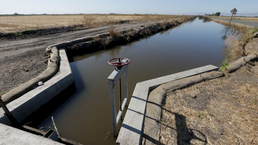 In this photo taken July 15, 2015, water flows down a canal near Byron, Calif. The California State